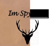 Logo-im-Spycher-für-Webside